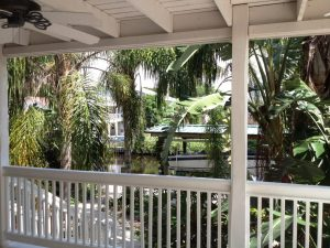 Baywood Village, palm harbor florida