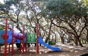 fred howard park, tarpon springs florida