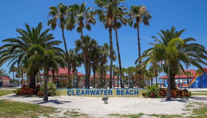 Welcome Sign in front of palm trees at Clearwater beach. Clearwater beach is a popular toursit destination on the Gulf coast of Florida